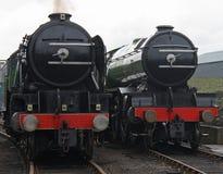 Dampf-Serien-Motoren. stockbilder