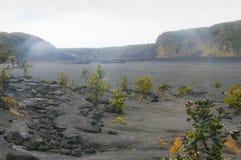 Dampf steigt von den Entlüftungen im Lavaboden nahe Kilaua, Hawaii, US stockfotografie