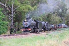 Dampf-Züge Stockfoto