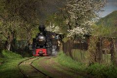 Dampf-Zug von Rumänien stockfotografie