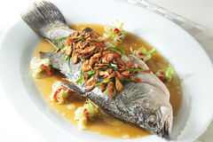 Dampffische Lizenzfreies Stockfoto