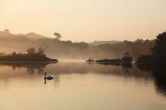 Dampfiger Morgen auf dem Fluss. Stockbilder