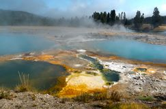 Dampfpools an Yellowstone Nationalpark, Wyoming, USA lizenzfreie stockfotos
