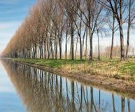 Damse在布鲁日附近的vaart运河 库存照片