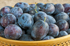 Damson Royalty Free Stock Photography