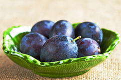 Damson Stock Photos