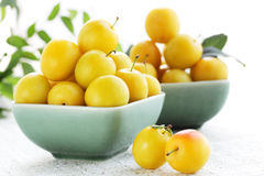 Damson plum. Two plates of the yellow damson plum Stock Images
