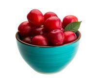 Damson plum Stock Image