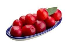 Damson plum. Isolated on white background Stock Photo