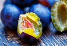 Damson plums Stock Image