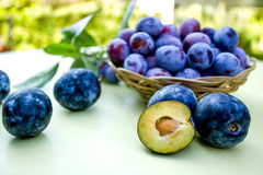 Damson - plums. Organic, high quality plums (damson) from Serbia Royalty Free Stock Photo