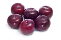 Damson plums Royalty Free Stock Image
