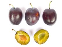 Damsons Royalty Free Stock Photo