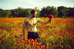 damy ` mężczyzna mężczyzna z mięśniowym ciałem w polu czerwony makowy ziarno Zdjęcia Royalty Free
