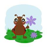 Damy pluskwa z kwiatem ilustracja wektor