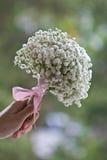 Damy ręki mienia dziecka oddechu kwiaty fotografia stock