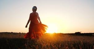 Dança à moda feliz da mulher e gerencio em um grande campo no por do sol imagem de stock royalty free