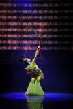 Dança clássica imagem de stock