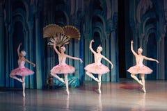 Dança da bailarina do dançarino de bailado durante o bailado Corsar Imagem de Stock Royalty Free