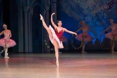 Dança da bailarina do dançarino de bailado durante o bailado Corsar Fotografia de Stock