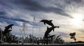 Dança da silhueta do golfinho Foto de Stock Royalty Free