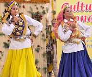 Dança de Haryanvi Fotografia de Stock Royalty Free