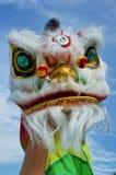 Dança de leão chinesa do ano novo Fotografia de Stock Royalty Free