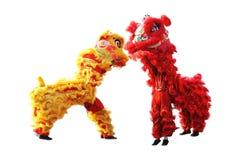 Dança de leão tradicional chinesa durante a celebração chinesa do ano novo Fotos de Stock