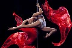 Dança de Polo foto de stock
