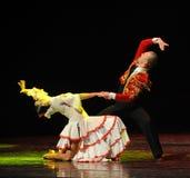 A dança do mundo da Áustria amor-espanhola tocante do flamenco- Imagem de Stock Royalty Free