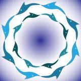 Dança dos golfinhos ilustração do vetor