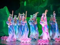 Dança dos lótus fotos de stock