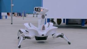 Dança futurista e mover-se da aranha do robô video estoque