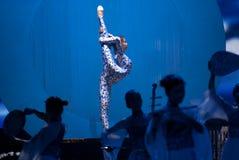 Dança: a porcelana azul e branca fotografia de stock