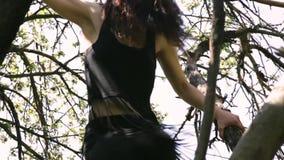 Dança 'sexy' nova da mulher do dançarino na árvore vídeos de arquivo