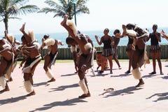 Dança tradicional do tribo Zulu imagem de stock
