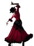 Dançarino aciganado da dança do flamenco da mulher Imagem de Stock