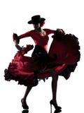 Dançarino aciganado da dança do flamenco da mulher Imagens de Stock