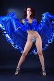 Dançarino como o cabaré francês clássico foto de stock