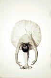 Dançarino de bailado Fotos de Stock