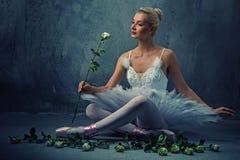 Dançarino de bailado bonito com rosas brancas. Fotos de Stock Royalty Free