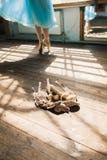 Dançarino de bailado que amarra sapatas de bailado Imagens de Stock Royalty Free