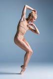 Dançarino moderno bonito novo do estilo que levanta em um fundo do estúdio imagem de stock royalty free