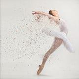 Dançarino novo da bailarina fotografia de stock