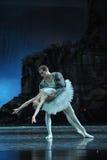Dançarinos de bailado elegantes em O Lago das Cisnes foto de stock royalty free