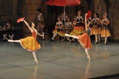 Dançarinos de bailado fêmeas Imagem de Stock