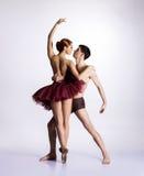 Dançarinos de bailado novos em um fundo branco imagem de stock royalty free