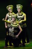 Dançarinos de Chinse. Trupe da arte de Zhuhai Han Sheng. Festival de mola 2013 Imagem de Stock