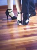 Dançarinos do latino da dança de salão de baile Imagem de Stock Royalty Free