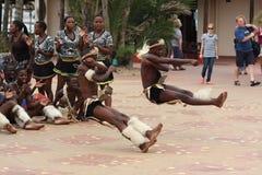 Dançarinos do tribo Zulu fotos de stock